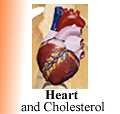 chinese medicines herbals heart
